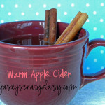 Warm Apple Cider {One Of My Most Favorite Recipes EVER!!!}