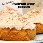 Two Ingredient Pumpkin Spice Cookies