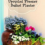 DIY Upcycled Freezer Basket Planter